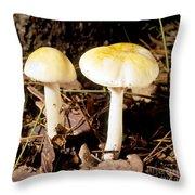 Two Death Cap Mushrooms Throw Pillow