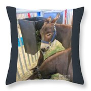 Two Donkeys Eating Throw Pillow by Donna Munro