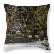 Two Ducks And A Tub Throw Pillow