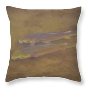 Two Fish In The Laguna Madre Throw Pillow