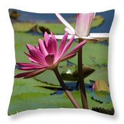 Two Graceful Water Lilies Throw Pillow
