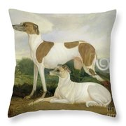Two Greyhounds In A Landscape Throw Pillow