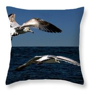 Two Gulls Throw Pillow