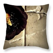 Two Halves Of A Bible Throw Pillow