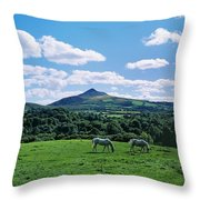 Two Horses Grazing In A Field Throw Pillow