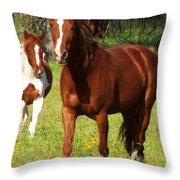 Two Horses In Summer Throw Pillow