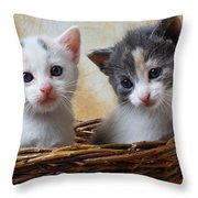 Two Kittens In Basket Throw Pillow by Garry Gay