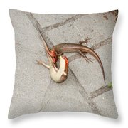 Two Lizards Are Fighting Throw Pillow