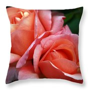 two Throw Pillow