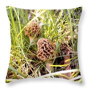 Two Morels Throw Pillow