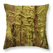 Waltzing In The Rainforest Throw Pillow