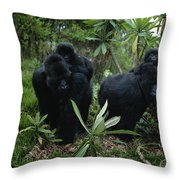 Two Mother Gorillas Carrying Throw Pillow