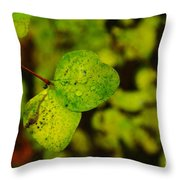 Two Of A Kind  Throw Pillow