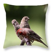 Two Offspring Throw Pillow