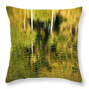 Two Palms Reflected In Water Throw Pillow by Rich Franco