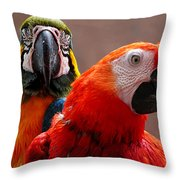 Two Parrots Closeup Throw Pillow