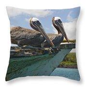Two Pelicans Pelecanus Occidentalis On Throw Pillow