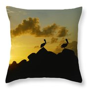 Two Pelicans Perched On Rocks Throw Pillow
