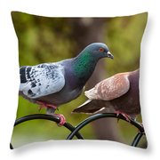 Two Pigeons Throw Pillow