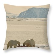 Two Polar Bears Eat A Carcass As Sea Throw Pillow