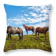 Two Quarters And An Appaloosa Throw Pillow
