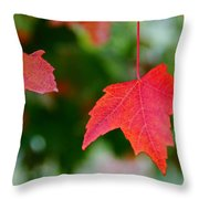 Two Red Maple Leaves Throw Pillow
