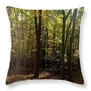 Two Roads Diverged Throw Pillow
