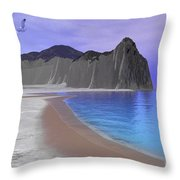 Two Seagulls Fly Over A Beautiful Ocean Throw Pillow by Corey Ford