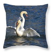 Two Swans Playing Throw Pillow