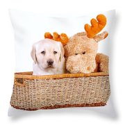 Two Toys Throw Pillow
