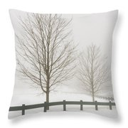 Two Trees And Fence In Winter Fog Throw Pillow
