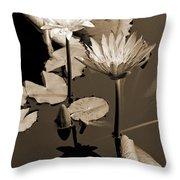 Two Waterlilies Sepia Throw Pillow