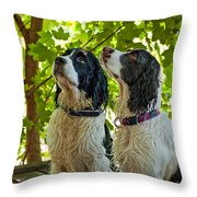 Two Wet Puppies Throw Pillow