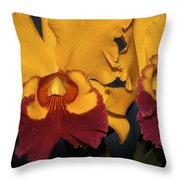 Two Yellow And Red Orchids Throw Pillow