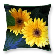 Two Yellow Dahlias Throw Pillow