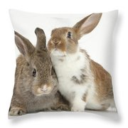 Two Young Rabbits Throw Pillow
