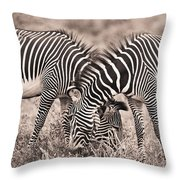 Two Zebras Grazing Together Kenya Throw Pillow