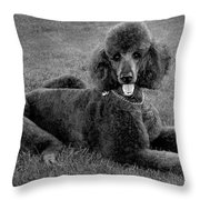Tyler In Black And White Throw Pillow