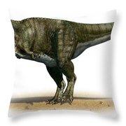 Tyrannosaurus Rex, A Prehistoric Era Throw Pillow