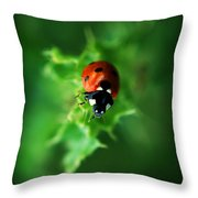 Ultra Electro Magnetic Single Ladybug Throw Pillow