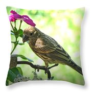 Umbrella For The Lady Throw Pillow