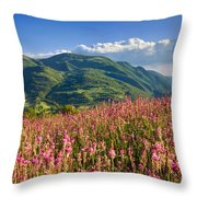 Umbria Throw Pillow