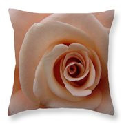Unblemished  Throw Pillow