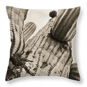 Under Saguaro Throw Pillow