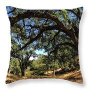 Under The Oak Canopy Throw Pillow