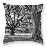 Under The Oaks Throw Pillow