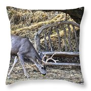 Under The Old Apple Tree Throw Pillow