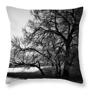 Under The Waiting Tree Throw Pillow