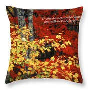Understand My Words Throw Pillow
