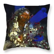 Underwater Bouquet Formed By Cluster Throw Pillow
